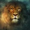 LupoSolitario - giocatore Lionzer